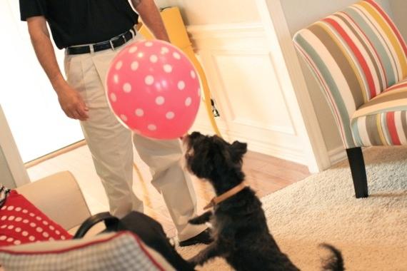 izzy balloon